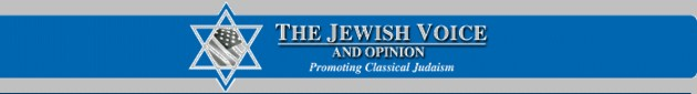 Jewish Voice and Opinion