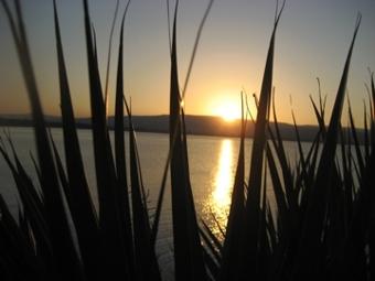 Israeli Sunset ©2008 Steve Singer
